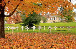 cemetary view of white crosses under autumn tree