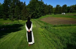 monk standing in green field come away retreat
